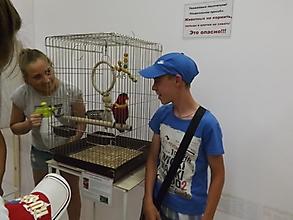Общительный зоопарк_4
