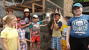 Летний день в мини-зоопарке_1
