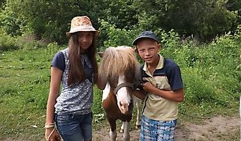 Летний день в мини-зоопарке_4