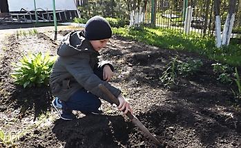 «Мы сажаем огород!»_1
