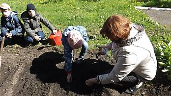 «Мы сажаем огород!»_3