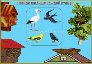 Изучаем перелетных птиц