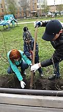 Всероссийский день посадки леса – 2018_1